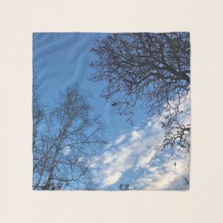 Écharpe de silhouette d'arbre de ciel bleu de
