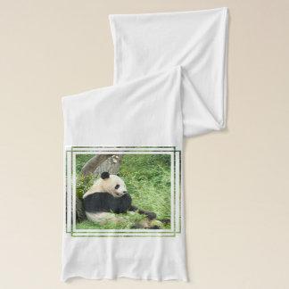 Écharpe Ours panda géant