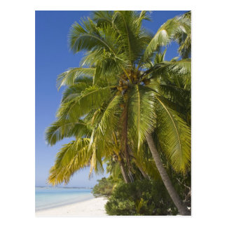 Échouez sur une île de pied, Aitutaki, îles Cook Cartes Postales