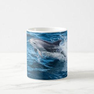 Éclaboussement de dauphin mug