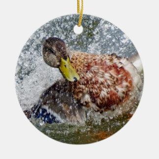 Éclaboussure de Splish de canard de poule de Ornement Rond En Céramique