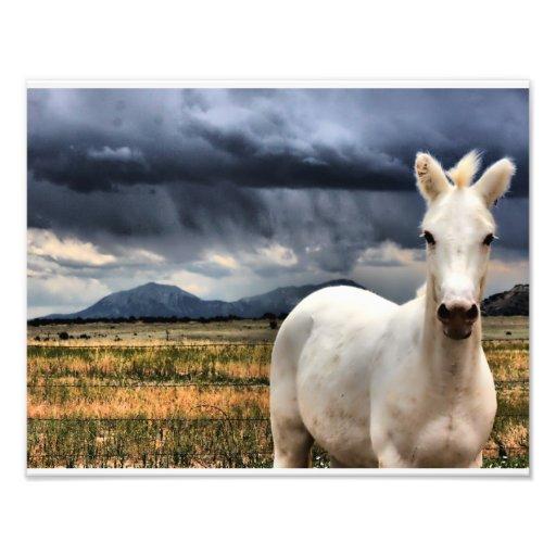 Éclair blanc photos d'art