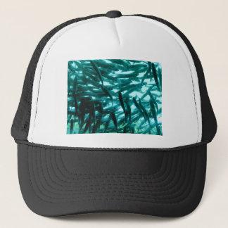École des poissons casquette
