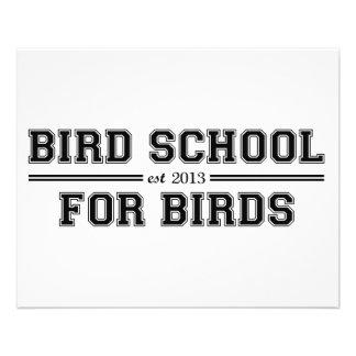 École d'oiseau qui est pour des oiseaux prospectus en couleur