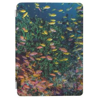Écoles de bain de poissons en récif protection iPad air