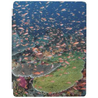 Écoles de récif coralien et de poissons protection iPad