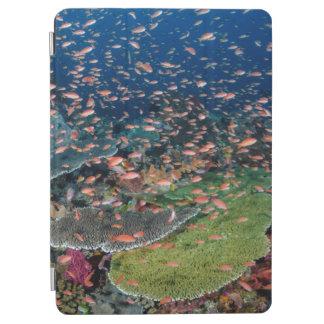 Écoles de récif coralien et de poissons protection iPad air