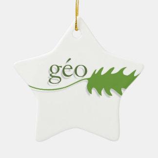 ecologie ornement étoile en céramique