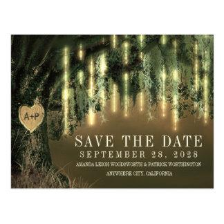 Économies de mousse espagnole d'arbre de Live Oak Carte Postale