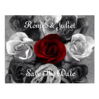 Économies noires de rose blanc la carte postale de
