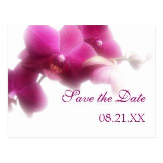 Économies roses d'orchidée le faire-part de date cartes postales