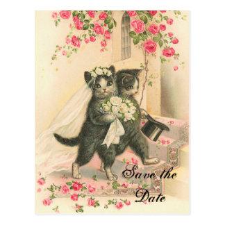 Économies victoriennes de mariage de chaton la dat cartes postales