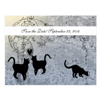 Économies vintages bleu-clair de chat la date carte postale