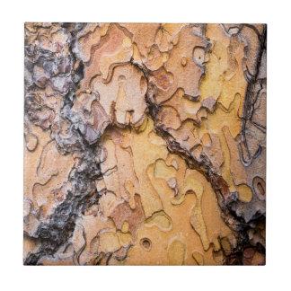 Écorce de pin de Ponderosa, Washington Carreau