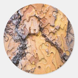 Écorce de pin de Ponderosa, Washington Sticker Rond