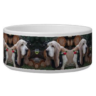 Écuelle chien de basset de cuvette de chien