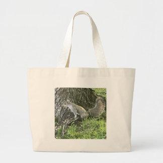 Écureuil à côté d'un arbre avec l'herbe verte grand sac