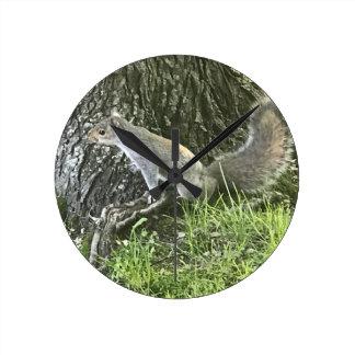 Écureuil à côté d'un arbre avec l'herbe verte horloge ronde