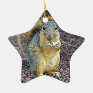 Écureuil affamé heureux ornement étoile en céramique