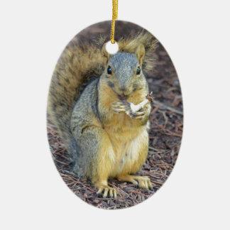 Écureuil affamé heureux ornement ovale en céramique