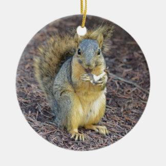 Écureuil affamé heureux ornement rond en céramique