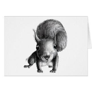 Écureuil curieux carte de vœux