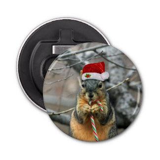 Écureuil de Noël