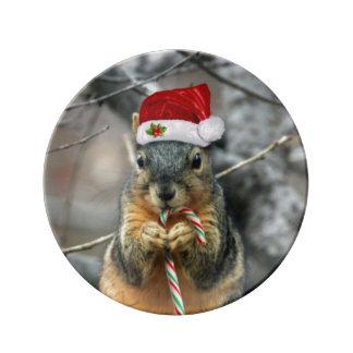 Écureuil de Noël Assiette En Porcelaine