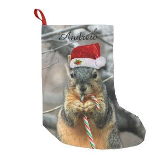 Écureuil de Noël Petite Chaussette De Noël