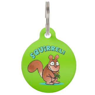 Écureuil ! Étiquette d'identification d'animal Médaillon Pour Animaux