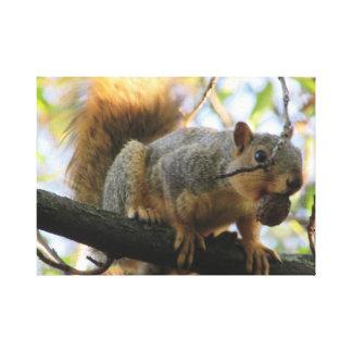 Écureuil mignon tenant un art de toile de