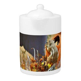 Écureuil moulu sur le pot de thé de cactus