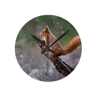 Écureuil rouge en Ecosse Horloge Ronde