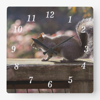 Écureuil rougeoyant horloge carrée
