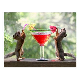 Écureuils d'heure heureuse carte postale