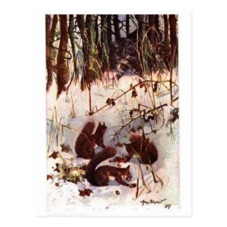 Écureuils et carte postale prédatrice