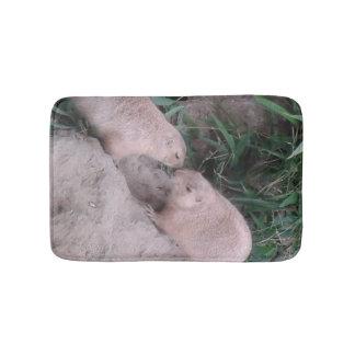 Écureuils moulus sur un tapis de bain