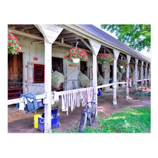 """Écuries """"asile de Saratoga de cheval """" Carte Postale"""