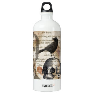 Edgar Allan Poe le crâne et l'oiseau de Raven