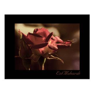 Eid Mubarak - carte postale de rose rouge