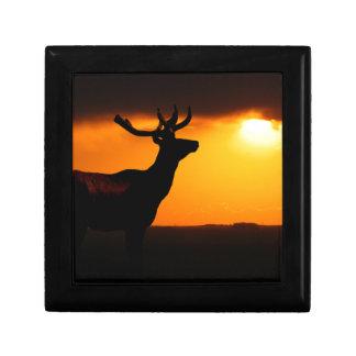 Élans au coucher du soleil petite boîte à bijoux carrée
