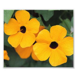 Élargissement de photo - fleurs jaunes