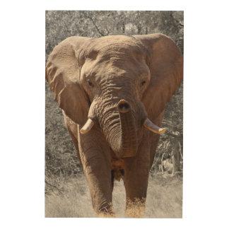 Éléphant africain de buisson impression sur bois
