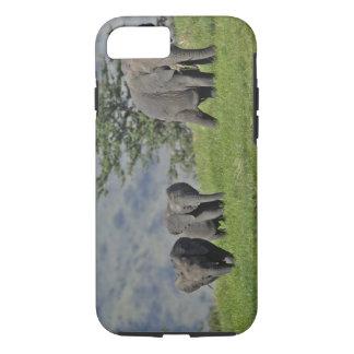 Éléphant africain femelle avec le bébé, Loxodonta Coque iPhone 8/7