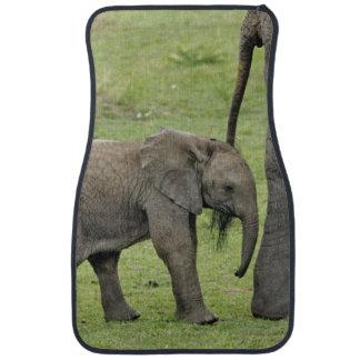 Éléphant africain femelle avec le bébé, Loxodonta Tapis De Voiture