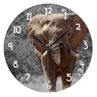 Éléphant africain grande horloge ronde