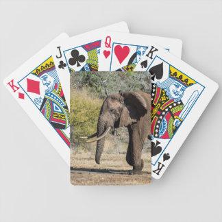 Éléphant avec de longues défenses jeu de cartes