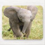 Éléphant bébé tapis de souris