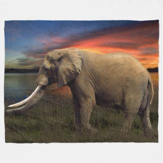Éléphant dans la couverture d'ouatine de coucher