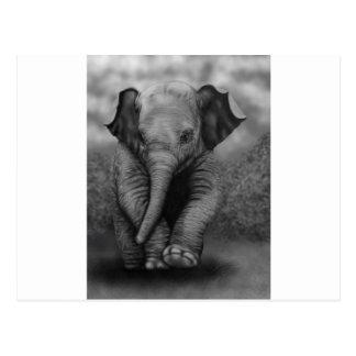 Éléphant de bébé carte postale